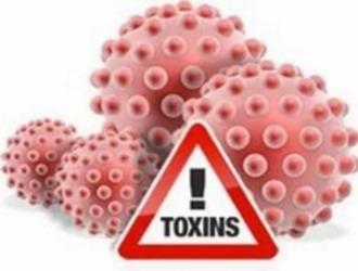 Вывод токсинов играет важную роль в борьбе с желтухой