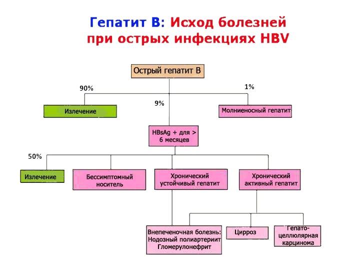 Схема последствий гепатита В