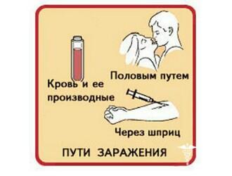 Наиболее распространённые пути заражения гепатитом Б
