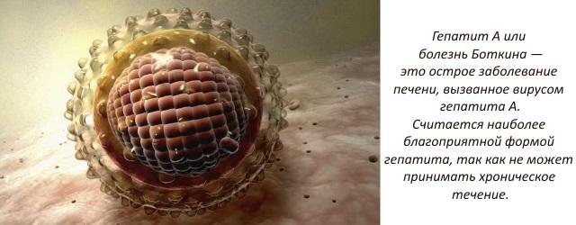 Гепатит а сроки лечения анализы thumbnail