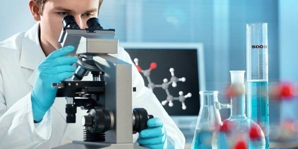 Для выявления антител используются ИФА и ПЦР