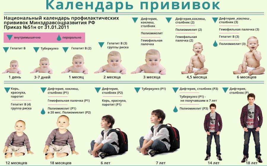 Календарь вакцинаций содержит график прививок не только от гепатита, но и от других заболеваний